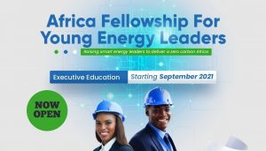 Africa-Energy-Fellowship-for-Young-Energy-Leaders-Wirkish